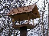 Téli madárélet