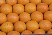 Hogyan ne legyen narancsbőröd?