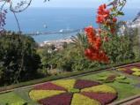 Kihagyhatatlan álomvilág – ott a helyem Madeirán