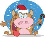 A mi karácsonyi csodánk