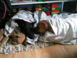 Mentett kutyám története