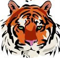 Egyre szaporodó tigristámadások...