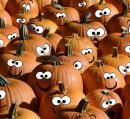 Halloween tökök és tartósításuk