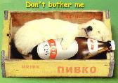 proma76 képeslapja