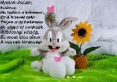 Húsvéti nyul