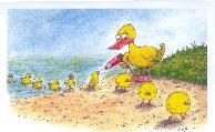 DODICA képeslapja