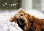 zsuzsa242 képeslapja