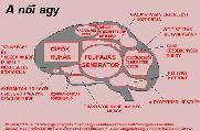MRG képeslapja