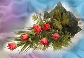 Vir�gos k�peslap