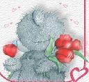 Macis képeslap