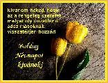 bnedora képeslapja