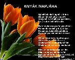 Laryan képeslapja