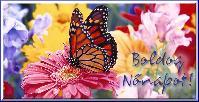 Nőnapi képeslap