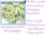 Ancika6 képeslapja