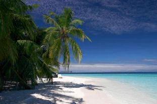 Ashton Kutcher és Victoria Beckham is szívesen hordja- Nyerj utazást Bali szigetére!